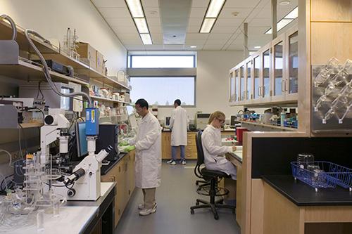 21 Biomedical Engineering
